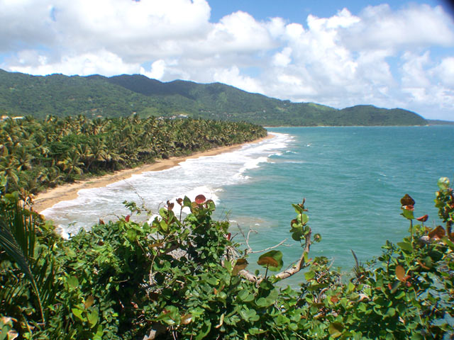 maunabo playa larga